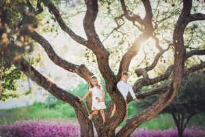 dos niños en un árbol en León, Gto.